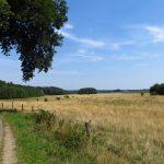 Noord-Limburg op de grens met Duitsland.