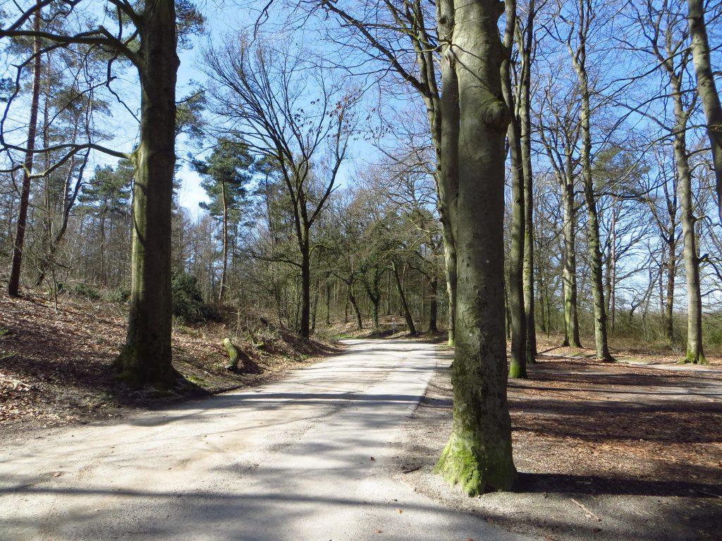 Op weg over het Hessenpad naar Doetinchem.