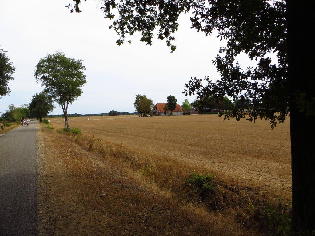 Landerijen zijn geel van de grote droogte die inmiddels begint te wedijveren met de grote droogte van 1976.