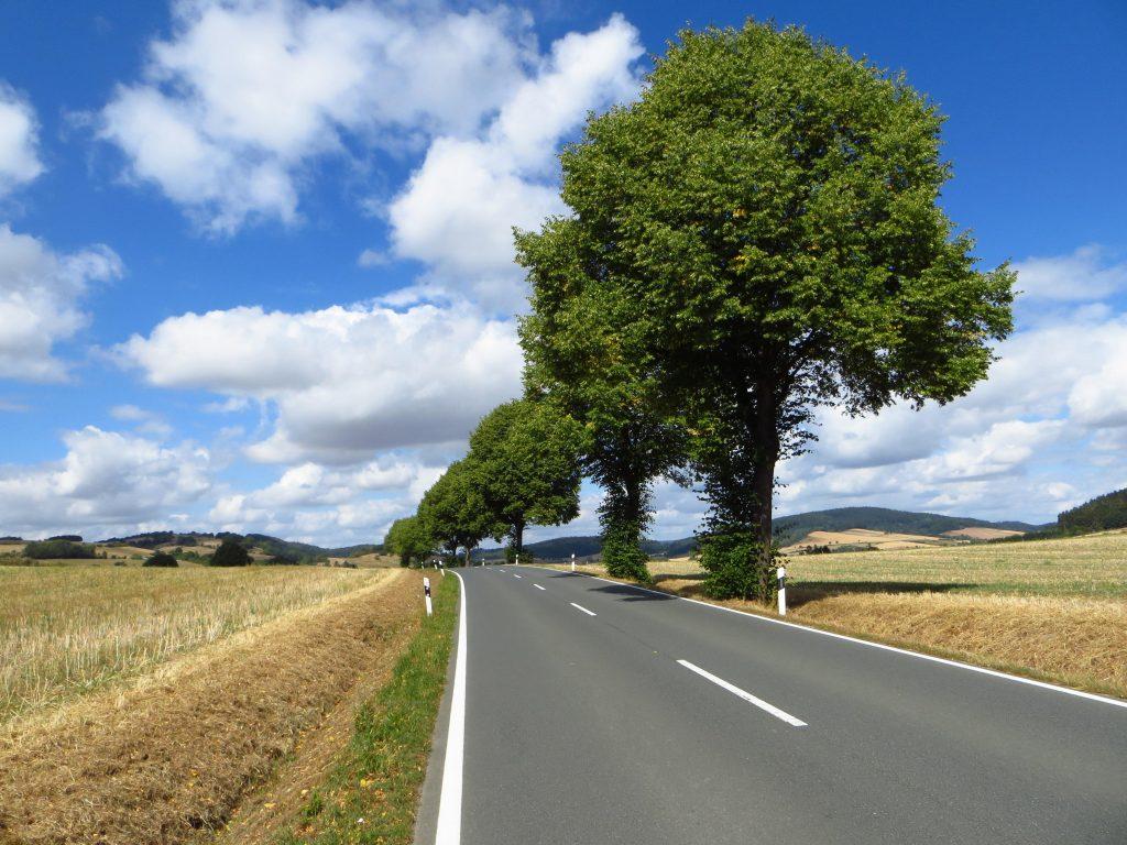 Een enkele keer fiets ik over een grotere doorgaande weg.