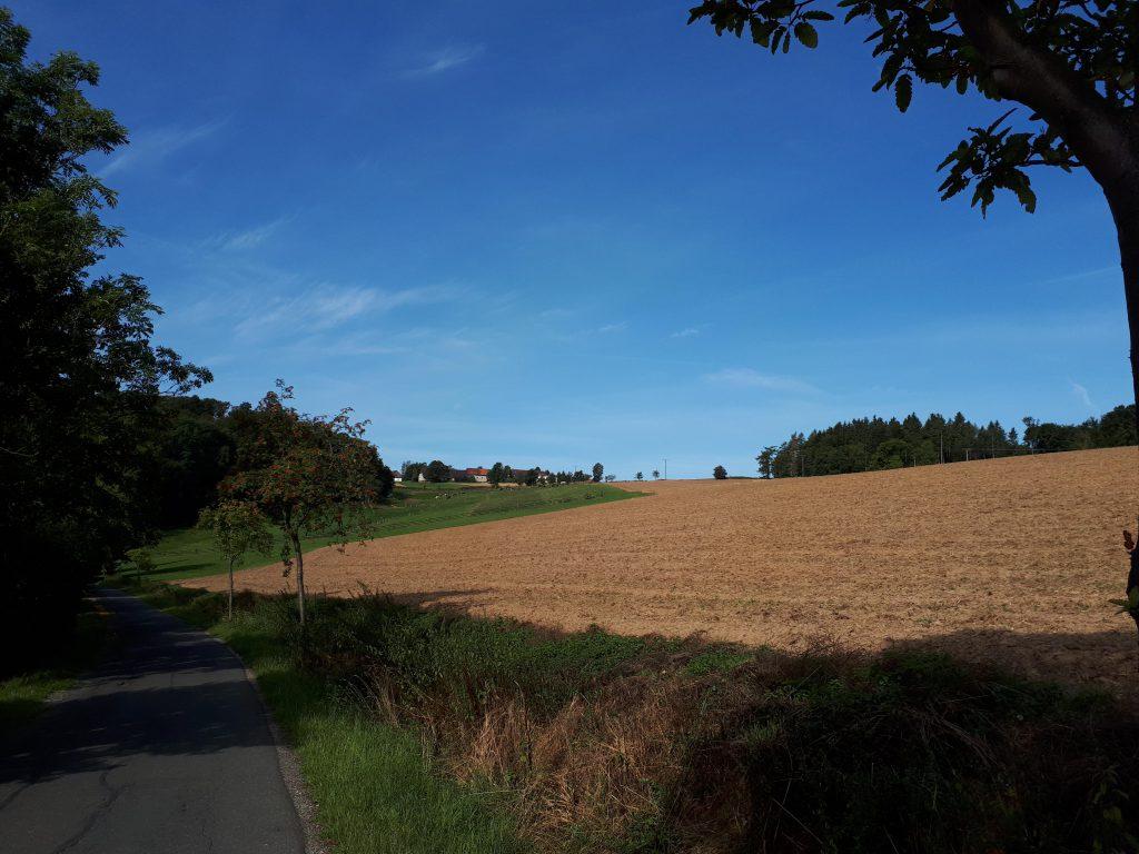 Het landschap als ik Bad Gandersheim uit fiets, hier is het wegdek nog goed ...