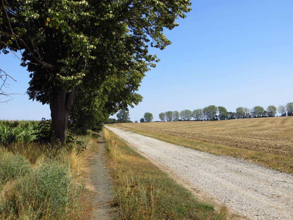Het lange fietspad, wat eigenlijk geen fietspad mocht heten. Eindeloos ging het door; de eenzame weg naar Berlin.