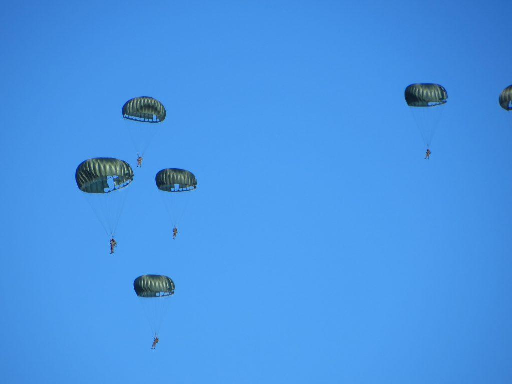 Vele parachutisten sprongen tegen een prachtig blauwe lucht.