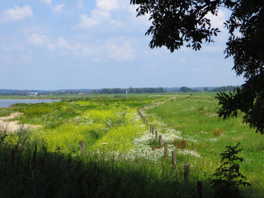 De noordoever van de Rijn, de laatste kilometers op weg naar Dieren.